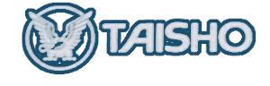 Taisho - Counterpain